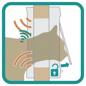 Sureflap Katzenklappe mit Chip-Sensor